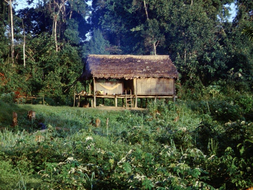 Unsere Unterkunft in einem Indianerhaus.