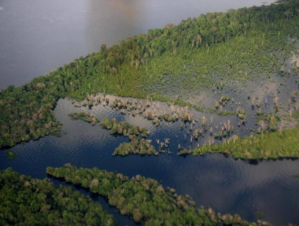 Im August ist am Rio Negro Hochwasser, die Wälder sind überschwemmt.