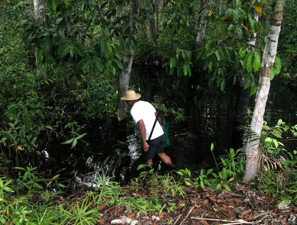 Pineiro zeigte uns, wie man die Fische fängt.