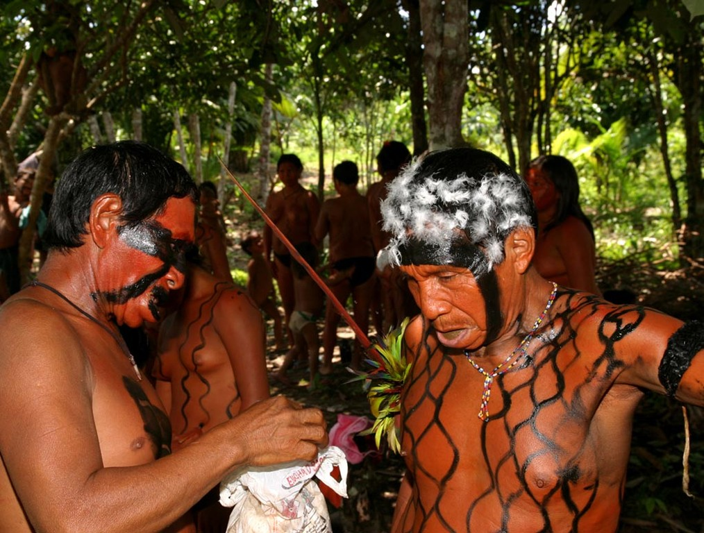Die Yanomami-Männer klebten sich mit Eiklar Daunen auf den Kopf.