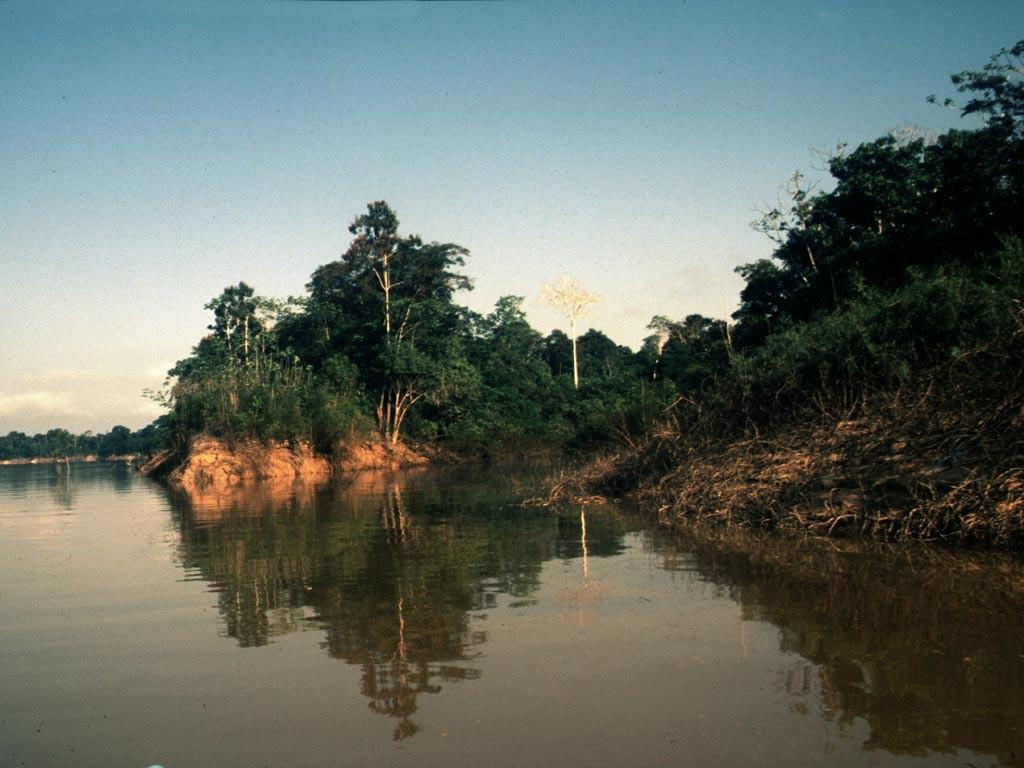Zum Fangplatz der Caboclos mussten wir einige Kilometer über einen Seitenarm des Rio Itaquai zu einem See fahren.