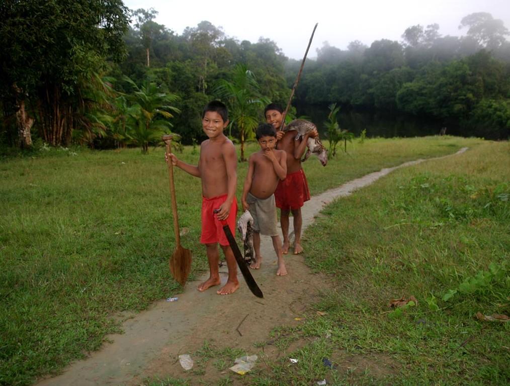 Auch das Paka und der Kaiman kommen in den Suppentopf.