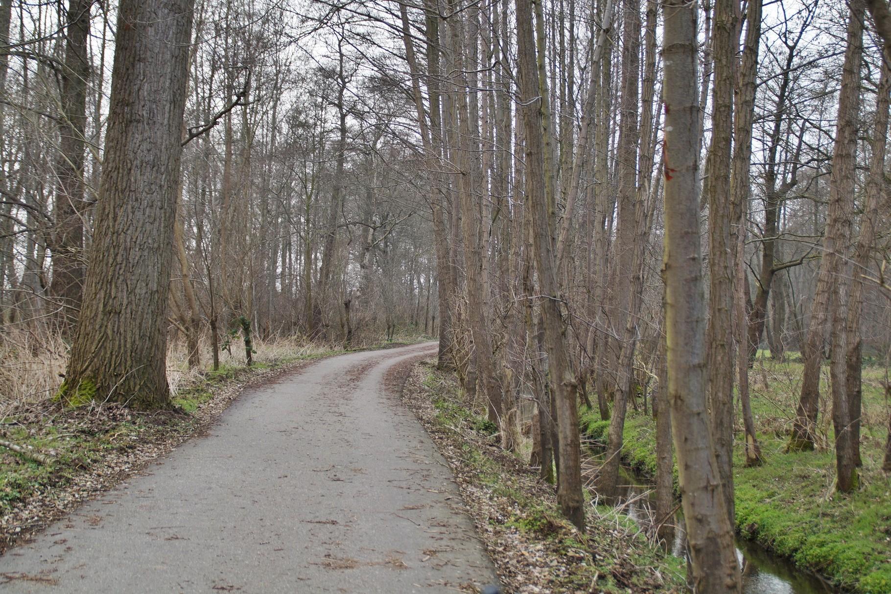 Der Fahrradweg ...