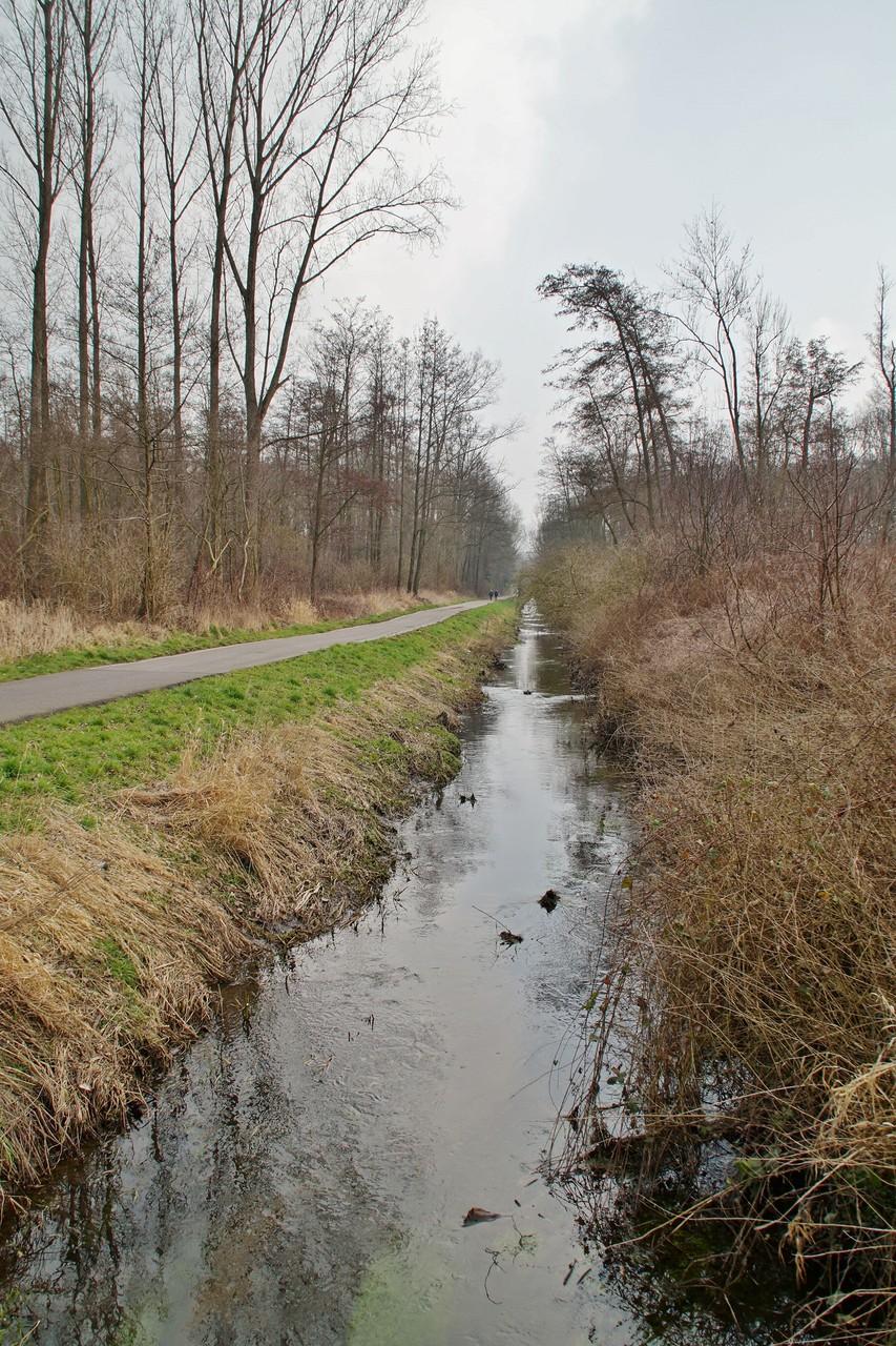 Am Rodebach entlang Richtung Wehr