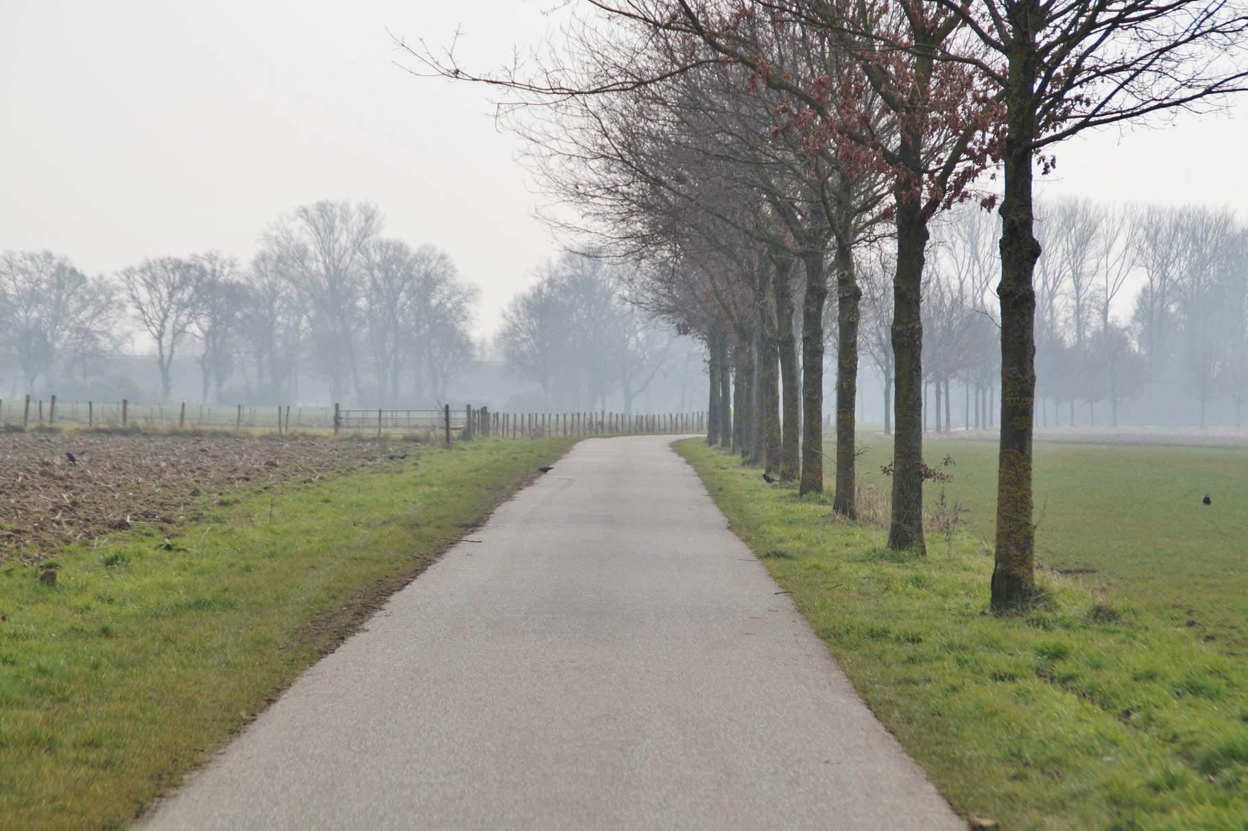 Der Fahrradweg nach Millen
