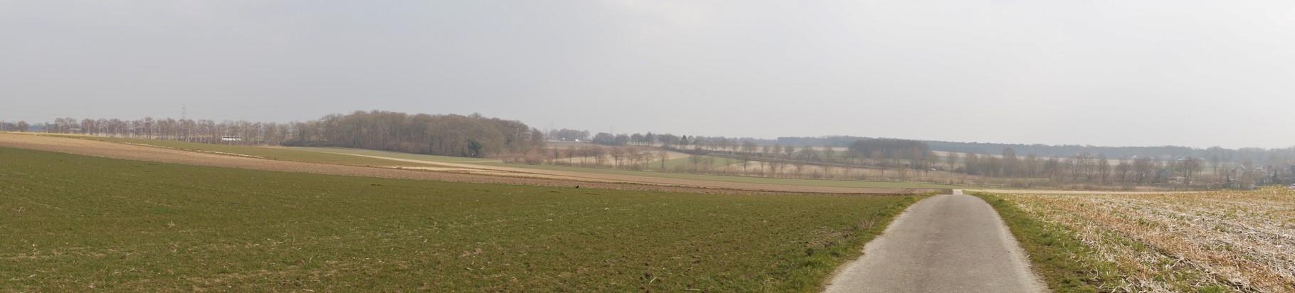 Panoramabild auf einer Anhöhe (Von Suesterseel kommend Richtung Höngen)
