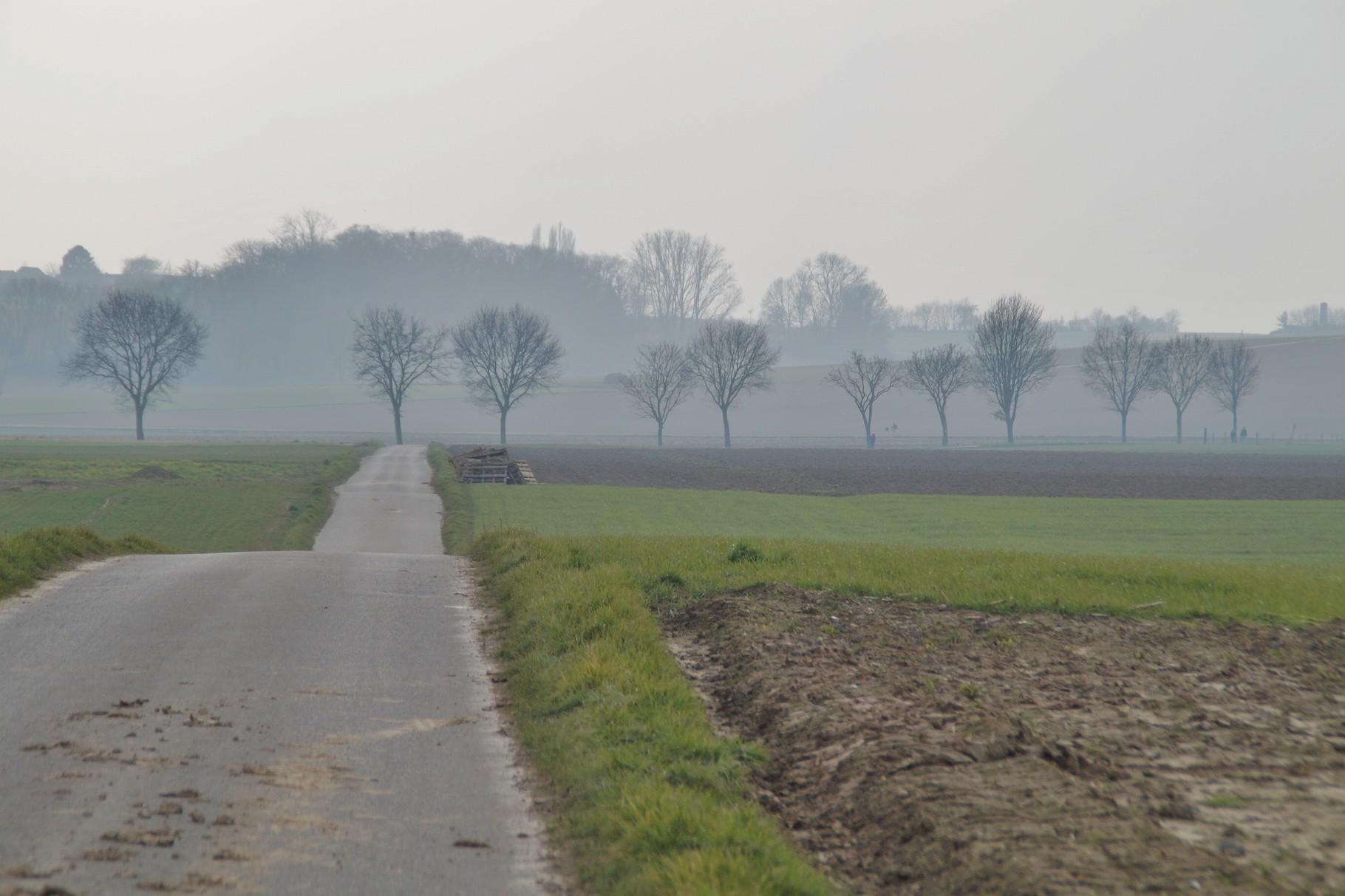 Der Weg Richtung Hillensberg
