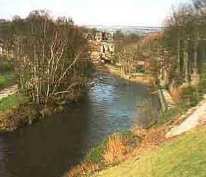 Fluß Aire                 Quelle: Airedale Terrier heute, Janet Huxley, Kynos Verlag