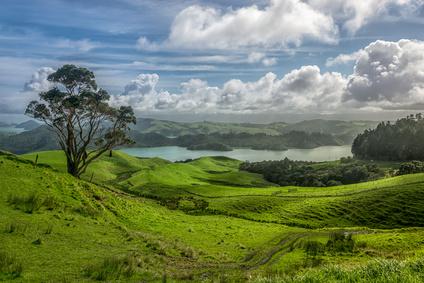 Auslandskrankenversicherung für Work and Travel und Freiwilligenarbeit in Neuseeland
