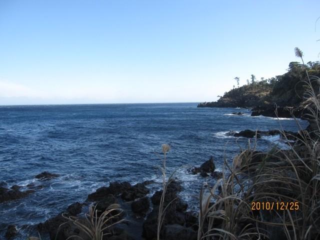 海岸沿いを、