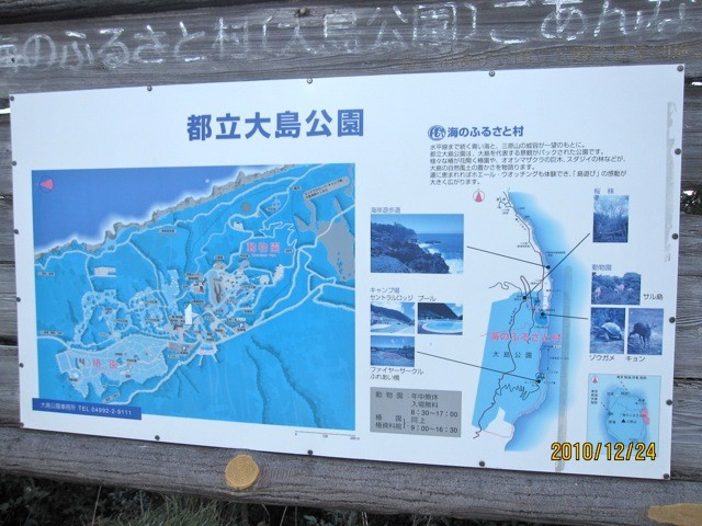都立大島公園に戻り、