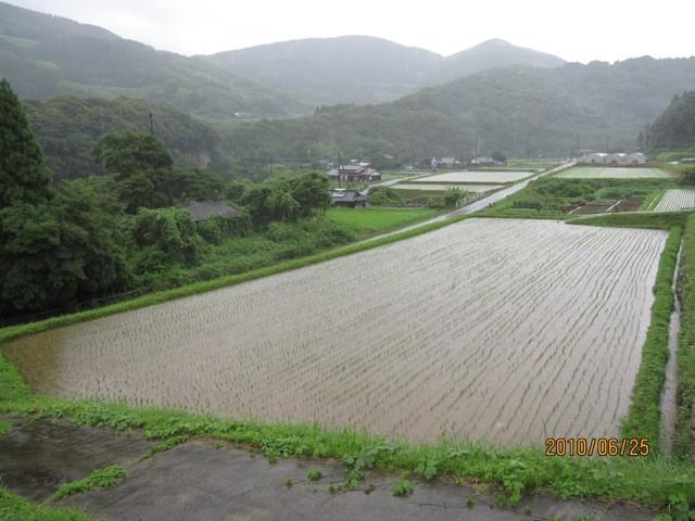 100625(金)雨