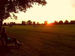 Sonnenuntergänge können auf unserer Gedankenbank am Feldrand genossen werden.