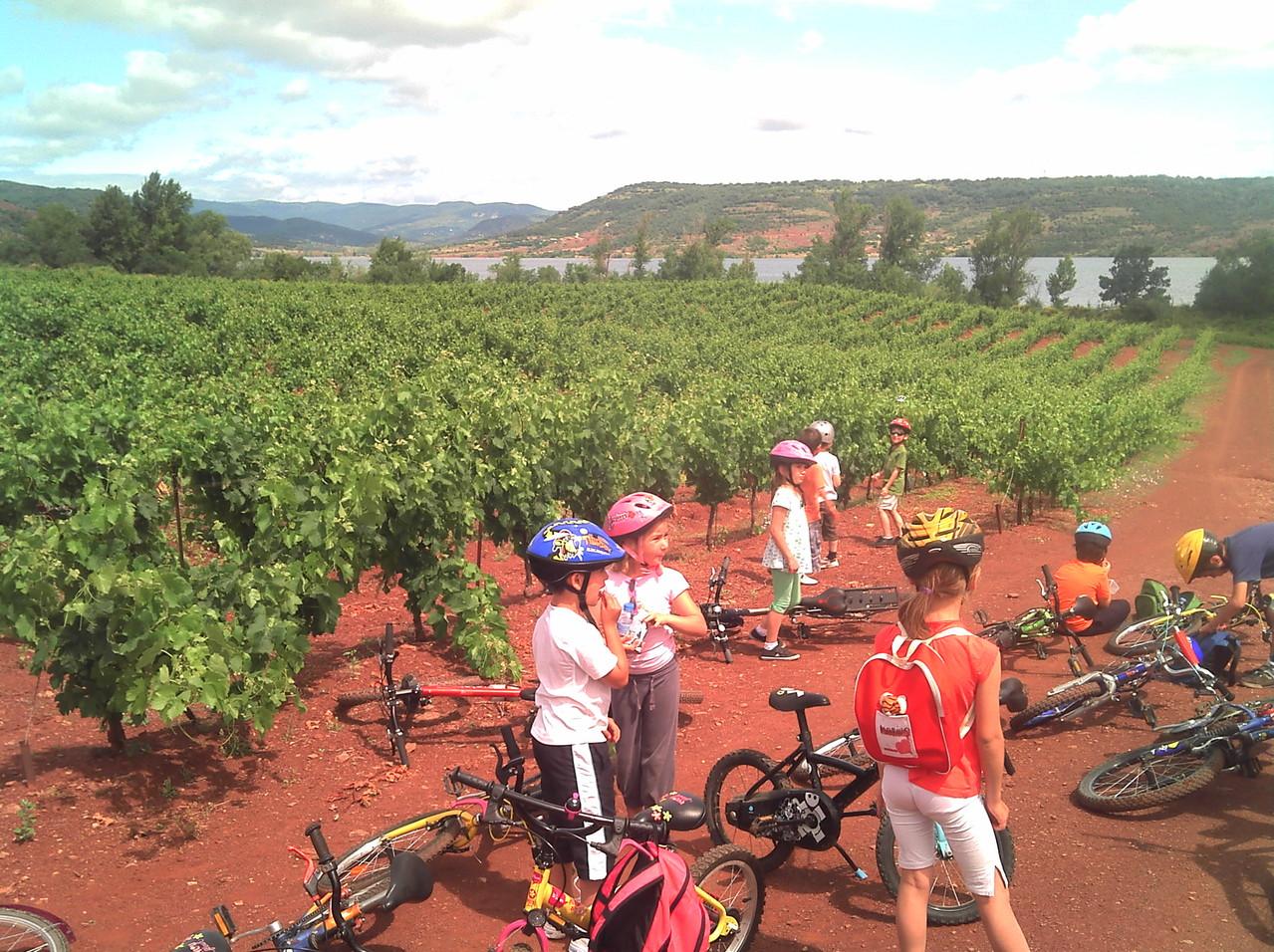 Sortie Vélo scolaire, sortie de fin de cycle vélo à l'école -Ozone