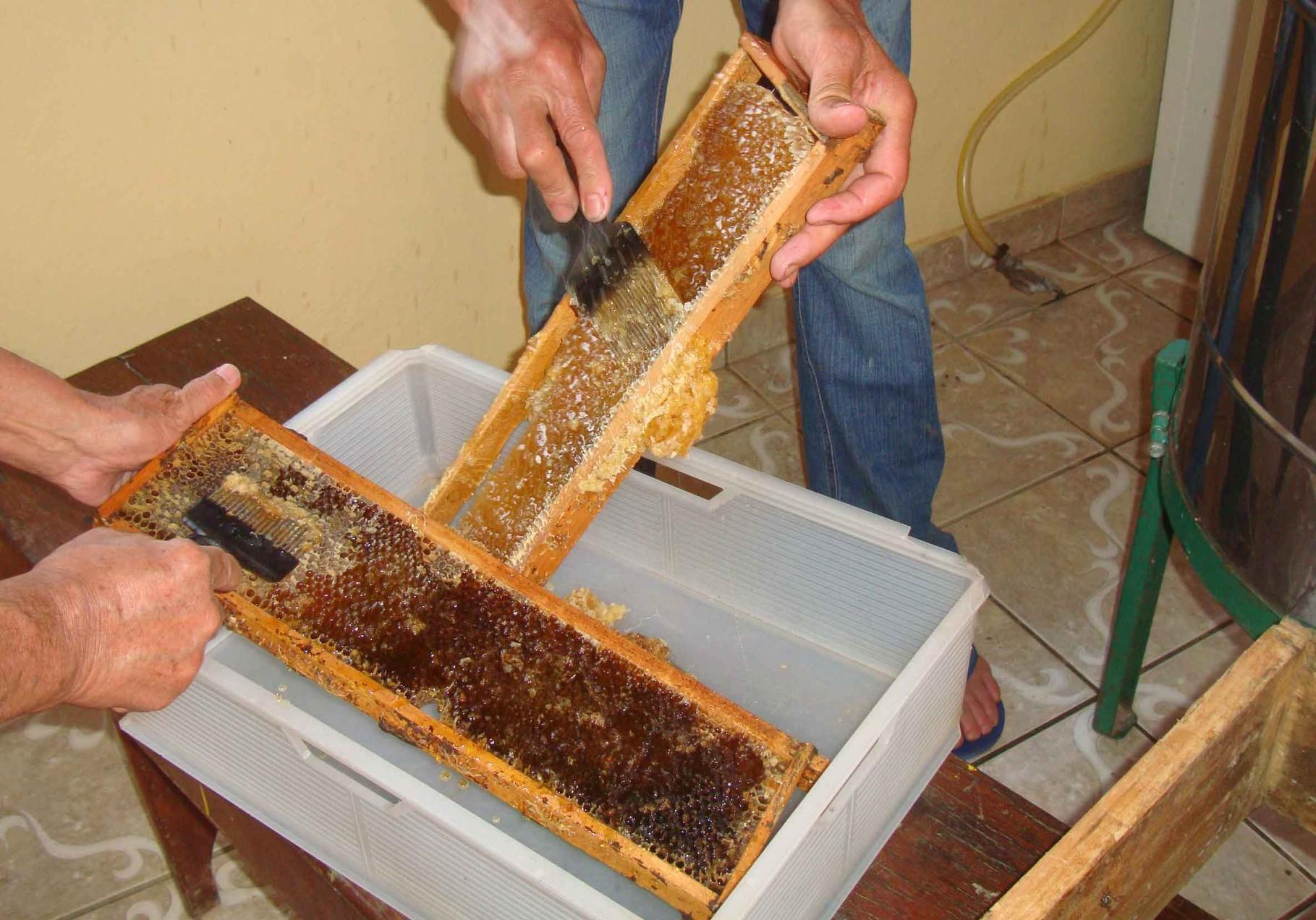 今回は巣箱オーナーの皆様へのお土産として、特別に蜂蜜を「失敬」してきました。
