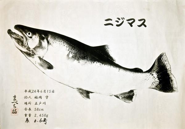 私の渓流釣り師匠、福岡一竿さんが釣ったニジマス。