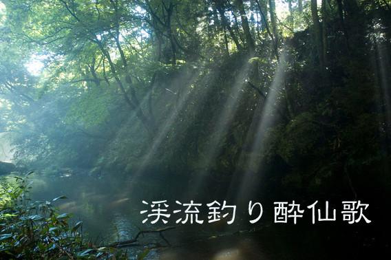 2010年8月 撮影 岩手県和座川の木漏れ日。