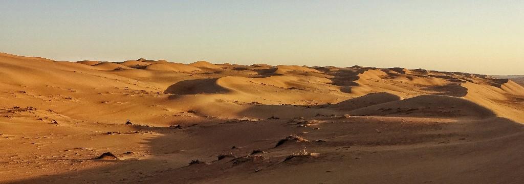 Endlich Wüste