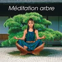 Méditation arbre-  PSIO PROGRAMMES