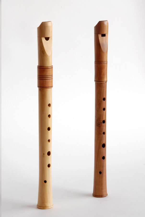 flautes d'estudi