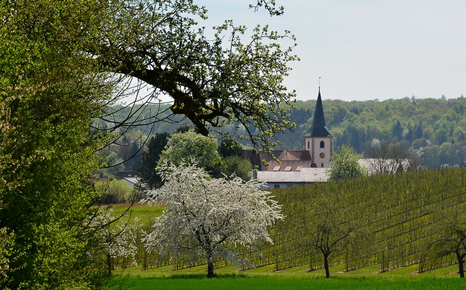 St. Martini Kirche in Landshausen
