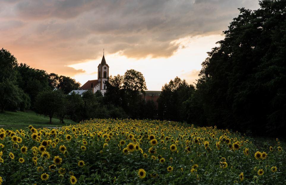 Kirche Sinsheim-Reihen