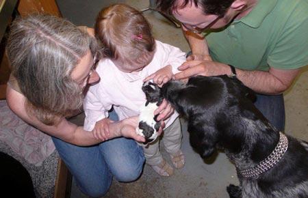 Enkeltochter bestaunt einen Welpen unter Aufsicht des Rüden