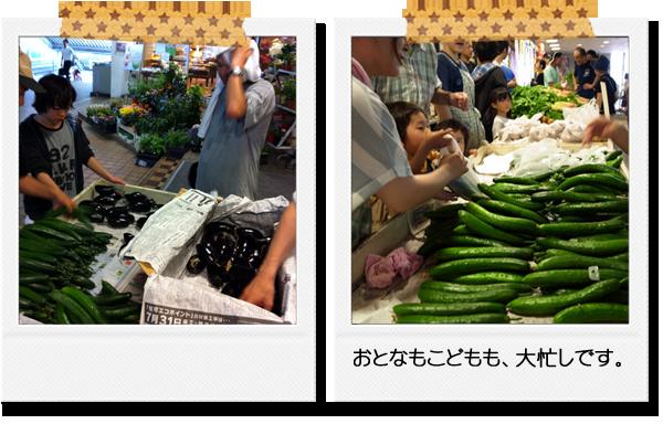 菊未会農業体験会(販売体験)