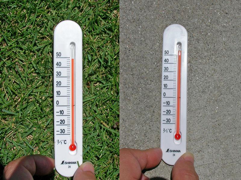 水分を含んだ土の芝生で49℃ アスファルトになると54℃