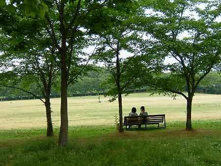 万博公園のベンチで語らい