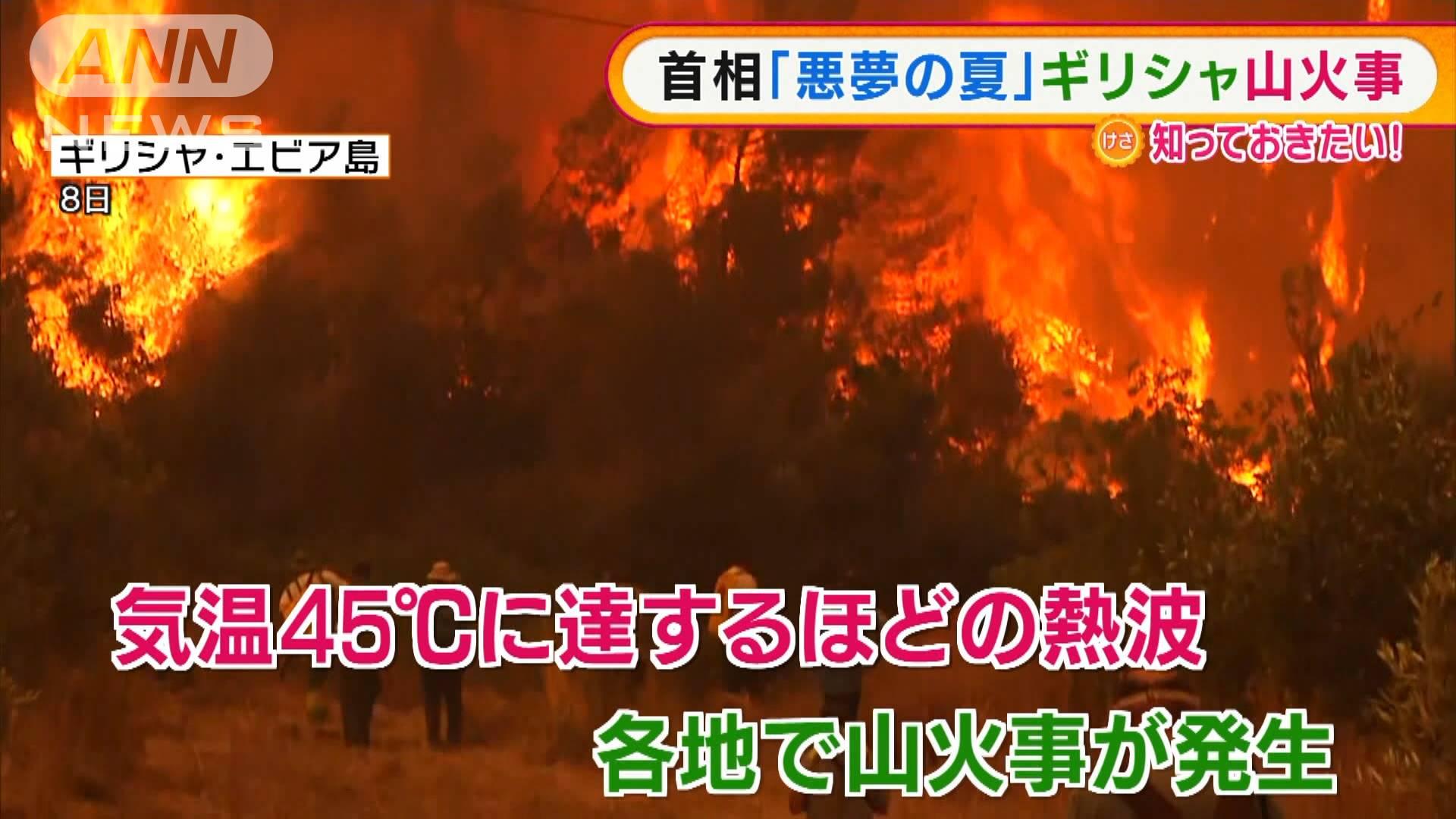 地球温暖化による熱波 世界の大規模森林火災発生