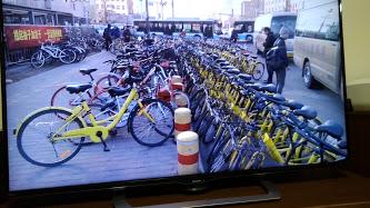 其々の色分けしたシエアー自転車が置かれています。スマホで鍵を開けて乗っていく