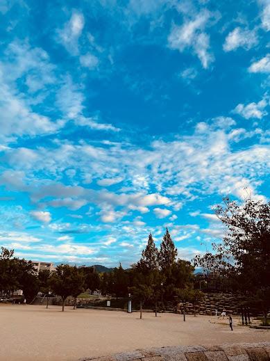 いわし雲、厳しい夏を乗り越え秋の訪れ