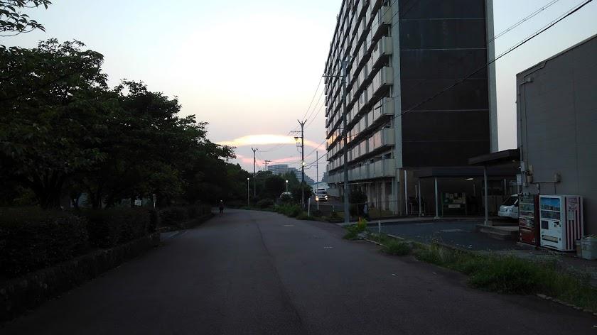 マンションの横にサイレンを鳴らした救急車到着、遠くに太陽が沈む光景