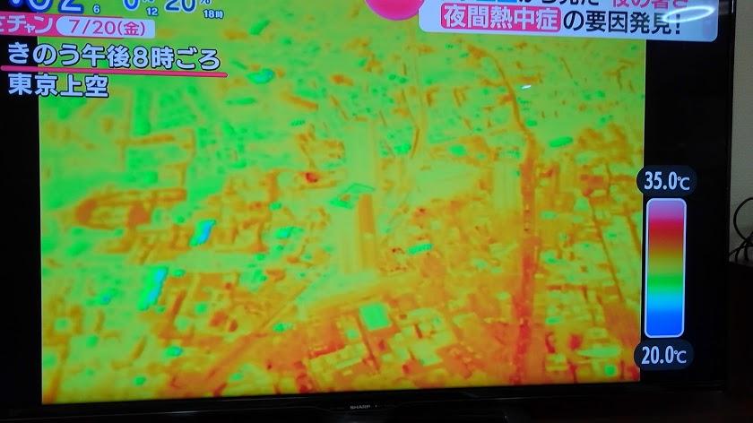 東京夜間熱中症の原因発見