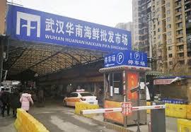 発生源とされる武漢海鮮卸売市場 100種類の野生動物の販売も