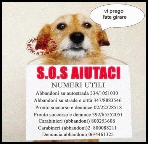 S.O.S. Aiutaci... numeri utili