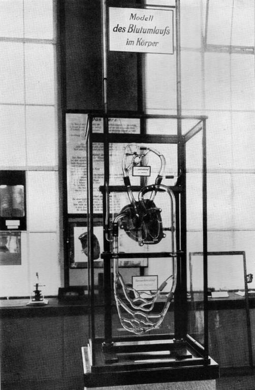 Modell des Blutkreislaufes, gezeigt auf der IHA 1911
