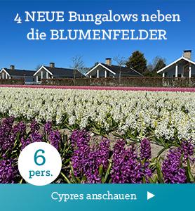 Nieuw: Bungalow Type Cypres XL voor 10 personen
