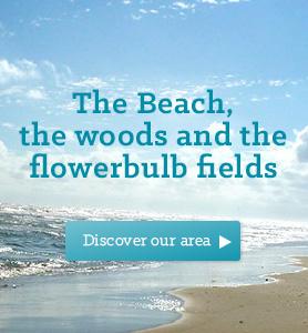 Bungalowpark in Noordwijk bij het strand, de bossen en de bollenvelden