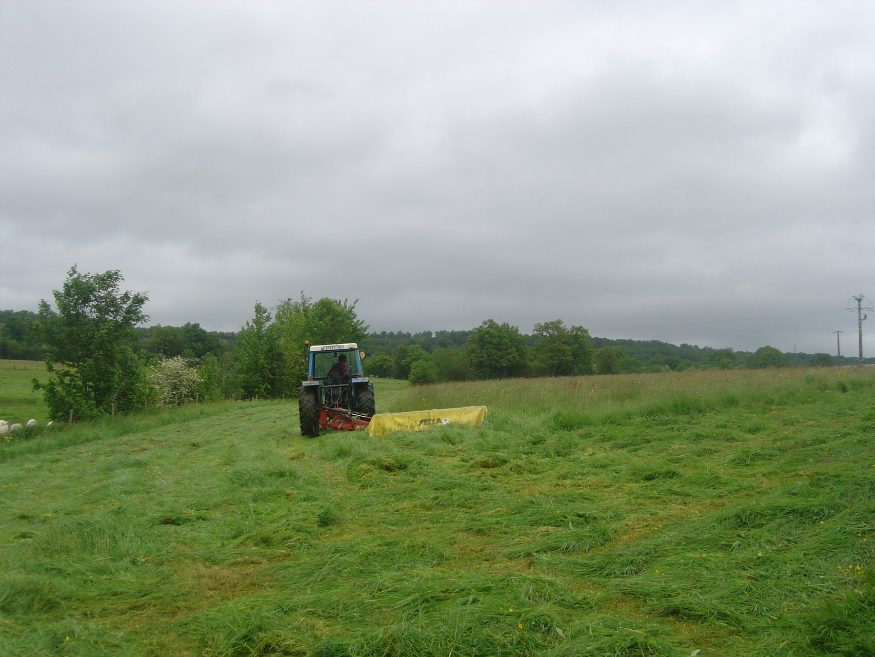 Le fauchage de l'herbe pour récolter le foin