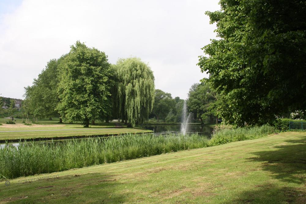 Schaepmansingel met gezicht op Park Vlaardingendijk