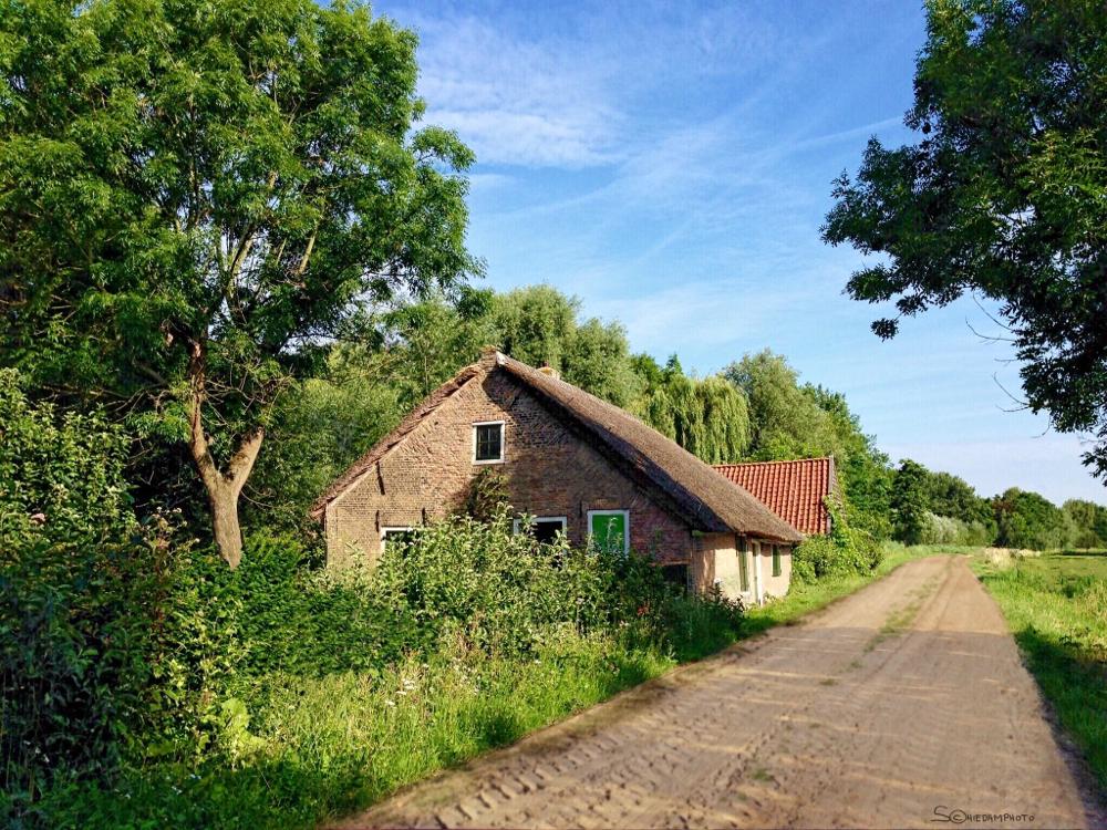 De Groene Raat Harreweg Schiedam