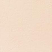 アレルピュア|ARW-303/NN2NN (ベージュ)