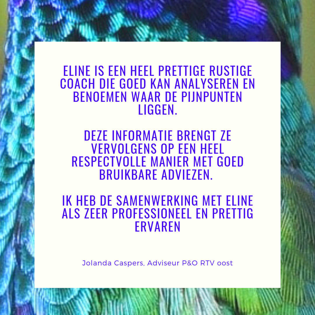 Review Jolanda Caspers, RTV Oost