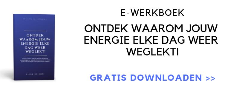 E-Werkboek Ontdek waarom jouw energie elke dag weer weglekt!