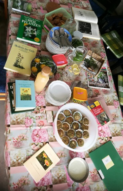 reich gedeckter Picknicktisch und viel Wissenwertes über Kräuter