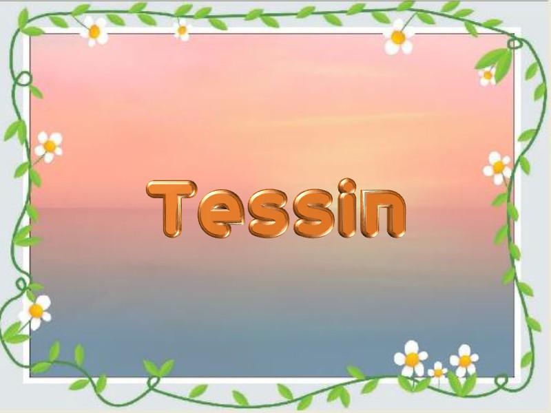 Woher hat das Tessin seinen Namen?