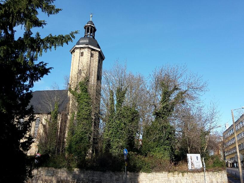 """Im Dezember 2017 werden auch die großen Bäume auf dem Johannisfriedhof erstmals einen Grundschnitt durch die Baumpflegefirma """"Baummarder"""" erhalten."""