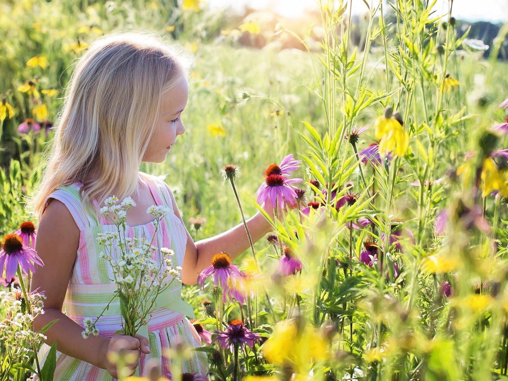 Allergiebehandlung: alternativ und komplementär